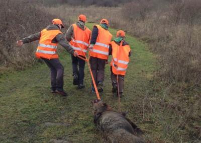 Jagd Kinder heranführen 2
