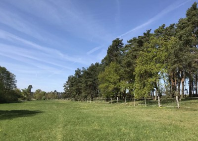 Rottstock Campwiese leer