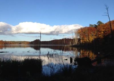 Schweingartensee 2
